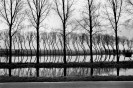 NETHERLANDS. Canal. 1994.