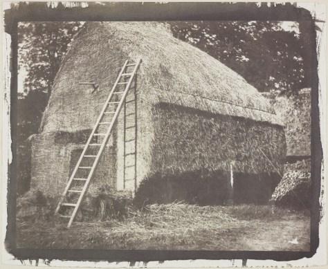 the_haystack