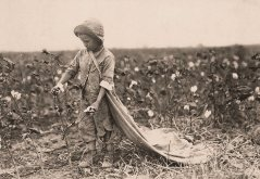 Warren Frakes de seis años. La madre dijo que recogió41 libras ayer. Tiene cerca de 20 libras en su bolsa. Comanche County, Oklahoma. Lewis Hine