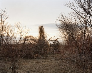 joel_sternfeld_on_this_site_11