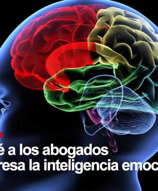 """Óscar León: Conferencia """"¿POR QUE A LOS ABOGADOS NOS INTERESA LA INTELIGENCIA EMOCIONAL?"""""""
