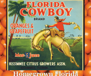 Homegrown Florida Special Exhibit