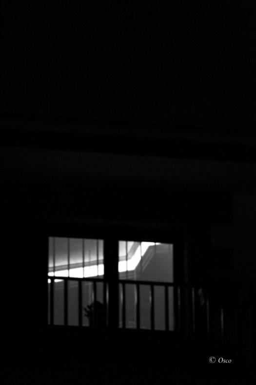Las líneas en el blanco y negro.