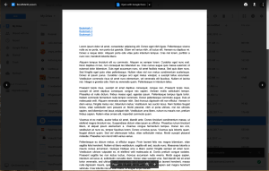 Google Drive preview document