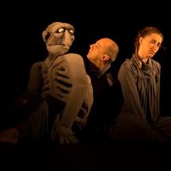 25 anos da Caixa do Elefante Teatro de Bonecos