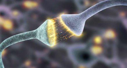 Resultado de imagem para reclamar muda o cerebro