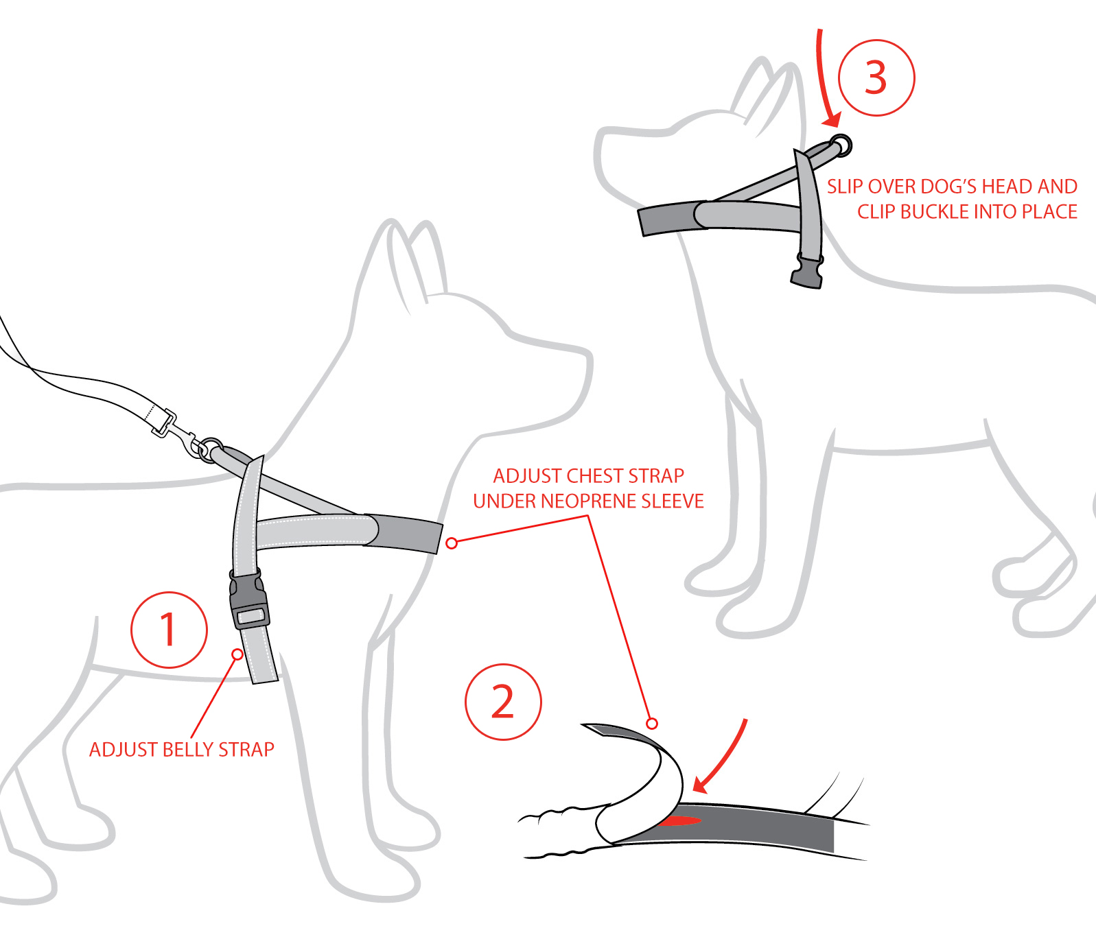 Ezydog Chest Plate Harness Fitting Instructions