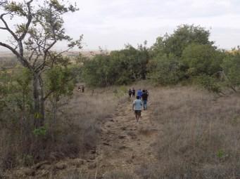 kilimambogo 3