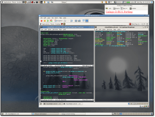 Galago in VMware Workstation 5