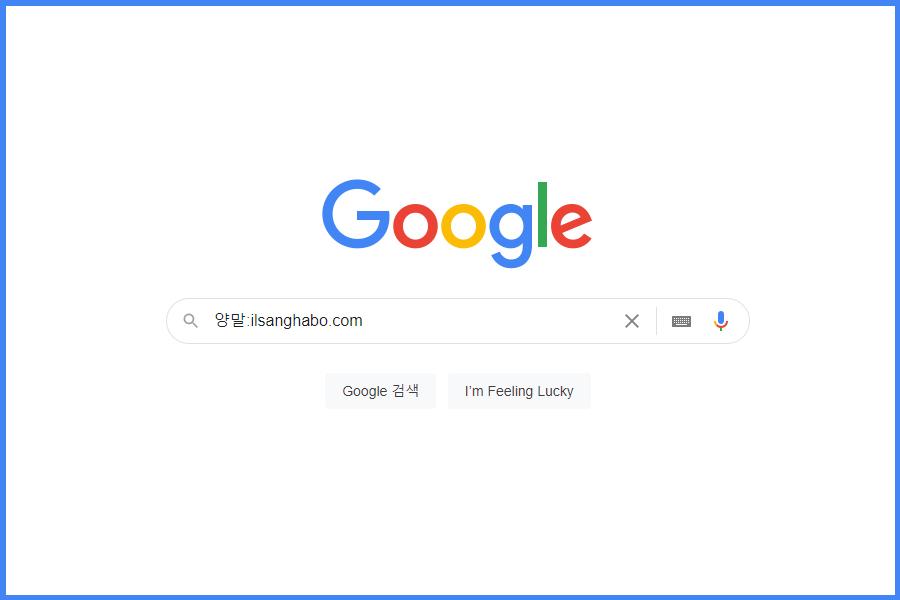 특정 사이트 검색,일상화보 양말