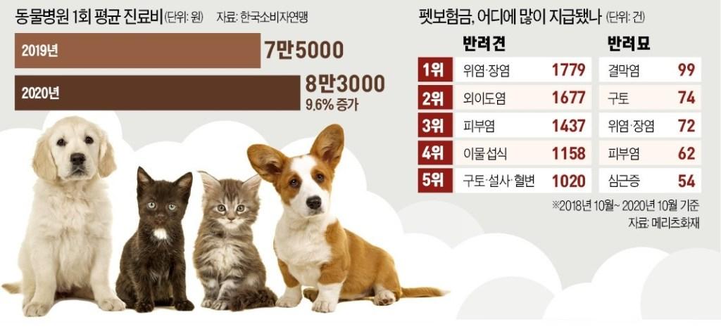 OSISWING 한국경제 반려동물 펫보험 펫라이프