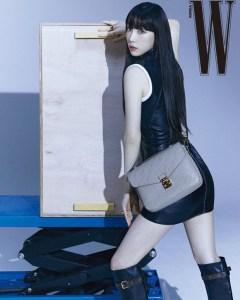 소녀시대 태연의 더블유코리아 화보 사진이다. 태연이 루이비통 모노그램 패턴이 새겨진 라이트 그레이 색상 숄더백을 매고 카메라를 바라보고 있다.