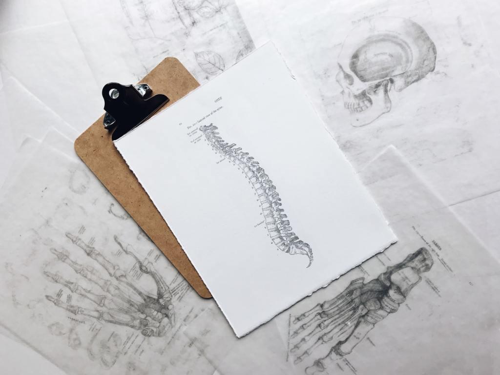 척추건강을 위해 바르게 앉도록 해야 하고 바르게 앉는 습관을 가지면 허리, 목 등의 통증이 완화될 것입니다.