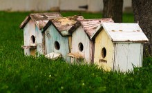 Photo of Birdhouse