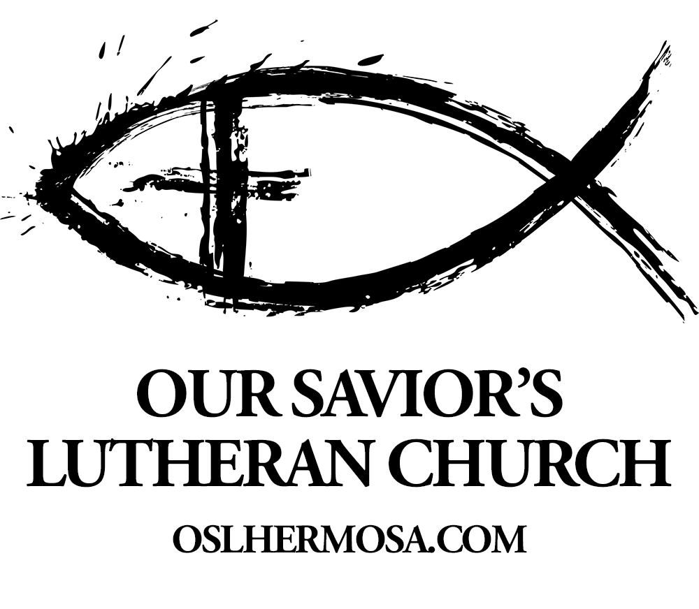 Three new logo designs for our saviors lutheran our saviors choice 3 modern fish biocorpaavc Image collections