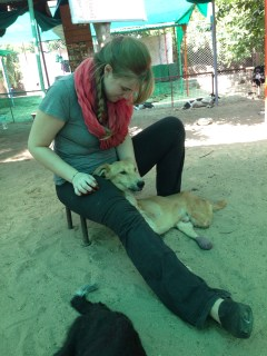 This was Wende's favorite dog, Dipak.