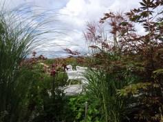 Miscanthus sinensis 'Ferner Osten' og 'Gracillimus'