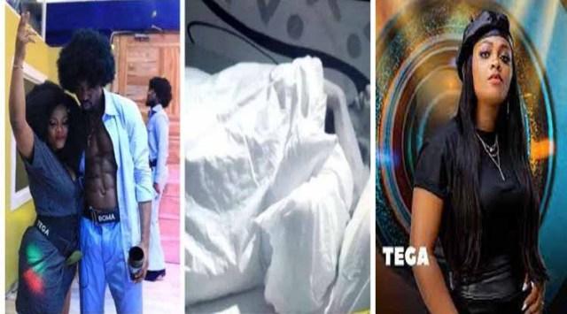 BBNaija Tega: I'm not apologising to anybody again – BomaBBNaija Tega: I'm not apologising to anybody again – Boma