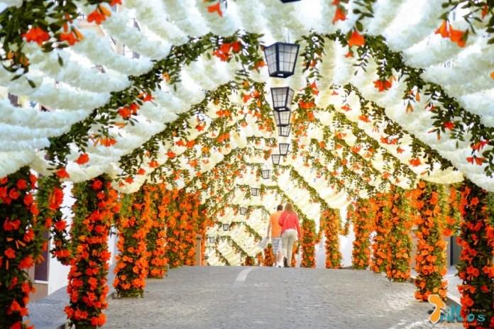 festas do povo - campomaior - flores