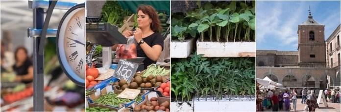 Mercado Chico - Avila
