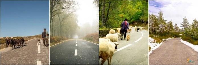 por essas estradas - os meus trilhos - Serra da Estrela