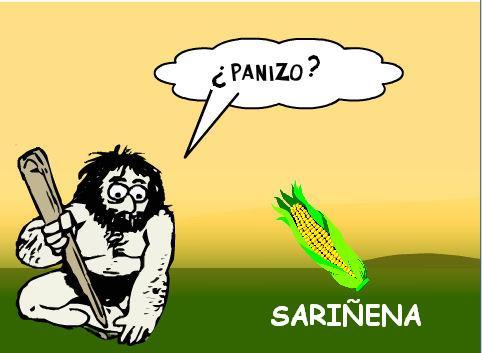 Sariñena: Territorio Panizo