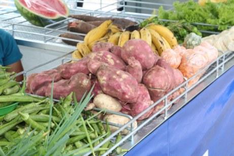 feira-agricultura-familiar-txf (2)