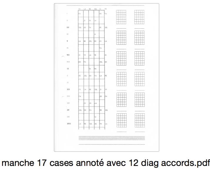 manche 17 cases annoté avec 12 diag accords