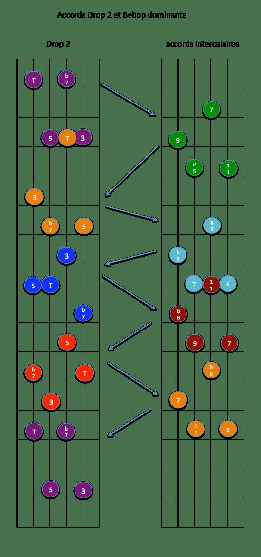 drop 2 -2345- x7 et Bebop dom
