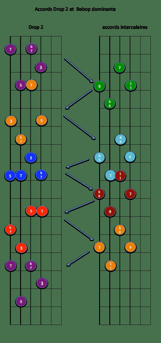 drop 2 -3456- x7 et Bebop dom
