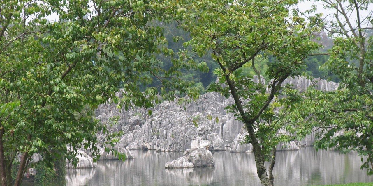 Viaje a Yunnan. Que hacer en Kunming y cercanías