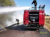 Pożar pobocza (5)