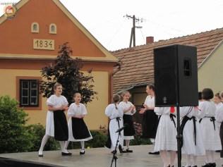 kulturna-suradnja-sa-hrvatina-u-madarskoj-168