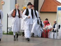 kulturna-suradnja-sa-hrvatina-u-madarskoj-215
