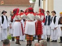kulturna-suradnja-sa-hrvatina-u-madarskoj-241