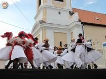 kulturna-suradnja-sa-hrvatina-u-madarskoj-252
