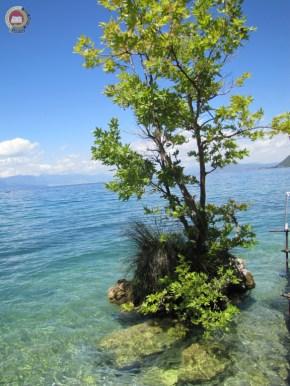 """Ethnic festival """"COSMOPOLIS"""" – Kavala – Grčka i Ohrid – Makedonija 2017-488"""