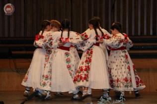 Turopoljski festival folklora 2018-51