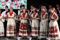 Lukovo u Novskoj, Novska 2019.39