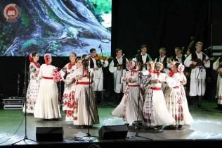 Lukovo u Novskoj, Novska 2019.44