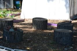 Outdoor seating in the school garden