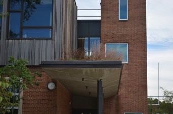 Green roofs help with storm water runoff