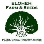 logo Eloheh Farm & Seeds reduced (25%)