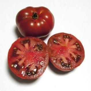 'Maralinga' Dwarf Tomato. Photo: Patrina Nuske Small