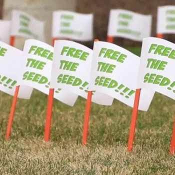 free-the-seed-square2