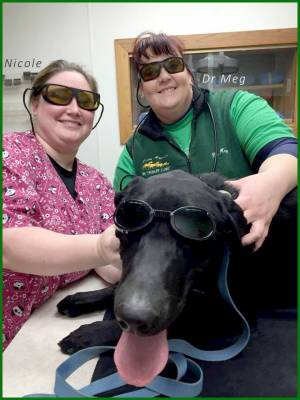 picture of medical staff and a black lab all with sunglasses on