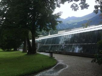 11. Hofgarten (2)