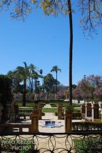 Plaza de Espana (28)