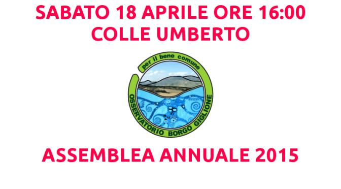Sabato 18 Aprile 2015, Assemblea annuale dell'Osservatorio BorgoGiglione