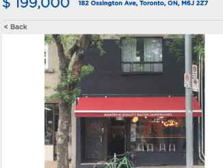 Rashers Ossington for sale